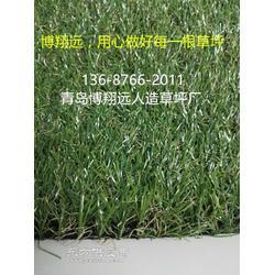 (已解决)学校运动草坪厂家图片