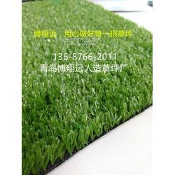 人造草坪代理【多图】图片