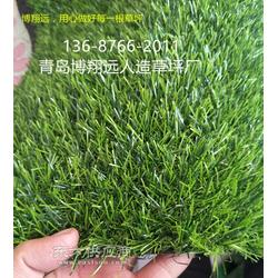 人造草坪针数图片