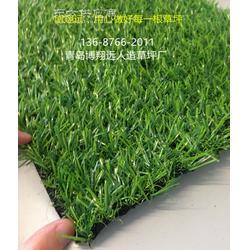 人造草坪施工方案哪家好-怎么买合适【已解决】图片
