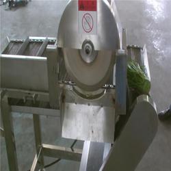 赣州生菜网带切根机、山东三智机械、生菜网带切根机厂家图片