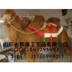 仿真骆驼模型图片