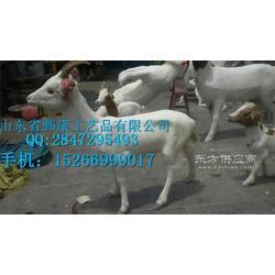 山羊标本,绵羊标本,山羊标本图片