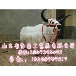 川藏牦牛标本图片