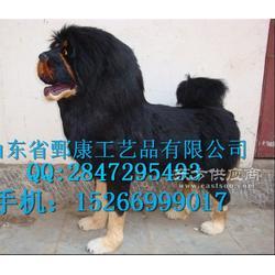 藏獒标本图片