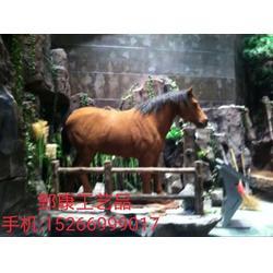 仿真馬影視道具馬標本模型圖片
