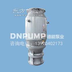 800QZB-100应急大流量防洪潜水泵站图片