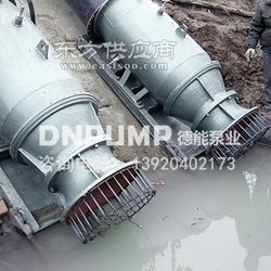 雨水泵站专用潜水轴流泵图片