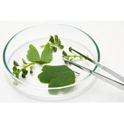 广谱植物保护剂销售-百恩生物-植物保护剂图片