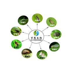 河北生物杀菌剂|百恩生物|生物杀菌剂厂家图片