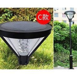 金三普灯饰厂家 不锈钢庭院灯-和顺不锈钢庭院灯图片