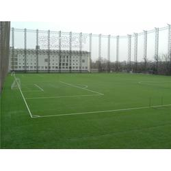 丰城篮球场人工草坪特性图片
