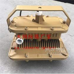 SBD1101-50E法蘭立桿式50w免維護節能防爆燈圖片