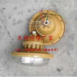 免维护节能灯SBF6103-YQL50E外壳防护等级IP66图片
