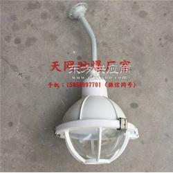 FAD-SL100bH防水防尘防腐全塑灯 壁装 三防灯 树脂材质图片