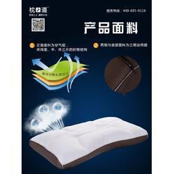 养生枕品牌,颈椎卫士(在线咨询),养生枕图片
