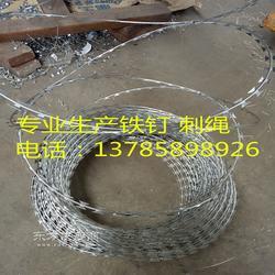 镀锌刀片刺绳 刺丝滚笼 蛇腹网厂家图片
