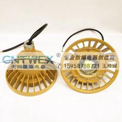 BLED110 护栏式防爆免维护LED法兰式照明灯 220V图片