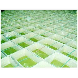 膏状防结块剂的厂家-潍坊大富源(在线咨询)膏状防结块剂图片