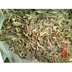 供应白腊种子20吨图片