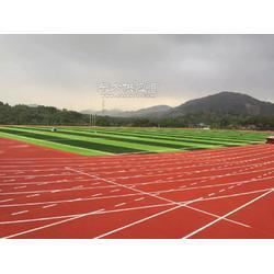 专业体育场地施工 运动场地设计施工公司图片