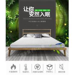 水暖床垫 双人-览未量子科技(在线咨询)水暖床垫图片