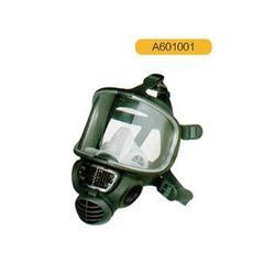 东城呼吸防护用品_泰斯克科技(在线咨询)_呼吸防护用品哪家好图片
