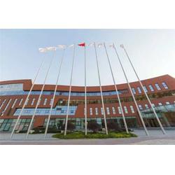 江苏旗杆厂家-不锈钢锥形旗杆厂家-龙旗(优质商家)图片