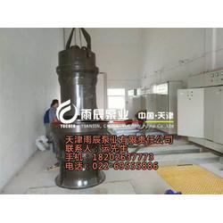 黑龙江轴流潜水泵,雨辰泵业有限责任公司,石油化工轴流潜水泵图片