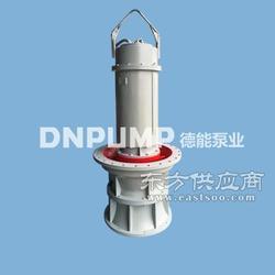 潜水轴流泵德能泵业欢迎实地参观考察图片
