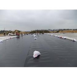 土工膜施工、全力塑业(在线咨询)、泸州土工膜图片