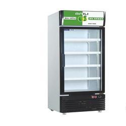 不锈钢单门商用冷柜-不锈钢单门商用冷柜-金捷能机电图片