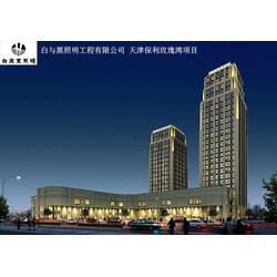 楼体亮化公司 白与黑照明工程(在线咨询) 楼体亮化图片