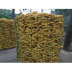 圈玉米荷兰网规格,乾悦,圈玉米荷兰网图片