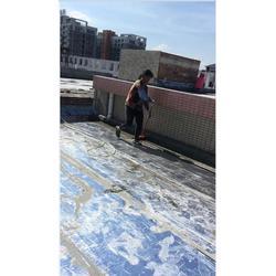 道滘顶楼防水-德禹防水图片
