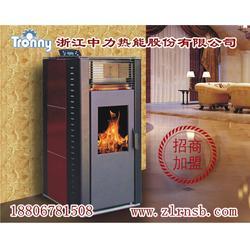 浙江壁炉-浙江中力品质保证选-壁炉图片