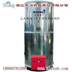 木质蒸汽发生器销售_蒸汽发生器_中力热能品质赢口碑图片