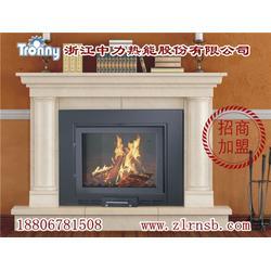 真火颗粒取暖炉公司 山东真火颗粒取暖炉 中力热能精选品质