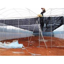 连栋钢架大棚-沃野钢架温室大棚-铜仁钢架大棚