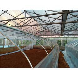 pc板温室大棚,昌宁温室大棚,沃野园艺温室大棚图片