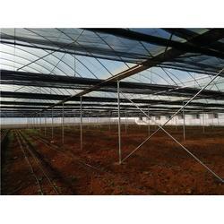 昆明蔬菜温室大棚-温室大棚搭建厂家-昆明蔬菜温室大棚建设