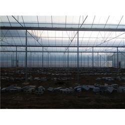 昭通温室大棚-沃野钢架温室大棚-日光温室大棚