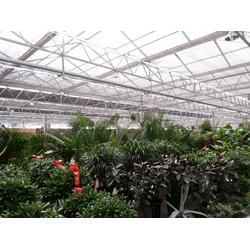昆明玻璃温室大棚-温室大棚搭建安装-玻璃温室大棚造价图片
