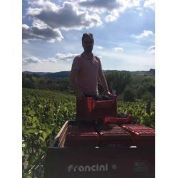 原装原瓶进口红酒_加诺葡萄酒(在线咨询)_红酒图片