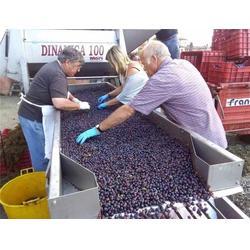 开瓶的红酒-加诺葡萄酒(在线咨询)-吉林红酒图片