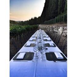 中卫红酒、代理红酒需要多少钱、加诺葡萄酒(优质商家)价格