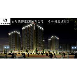 楼体亮化公司、楼体亮化、白与黑照明工程(在线咨询)图片