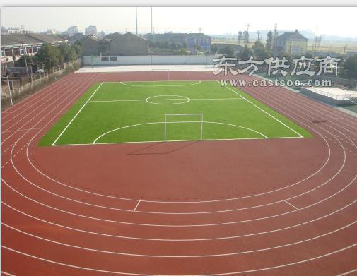 泰州跑道-跑道施工-方康体育图片