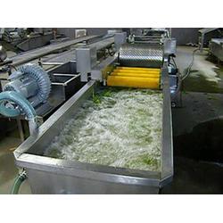 莱芜生姜清洗机供应、诸城奥普机械图片