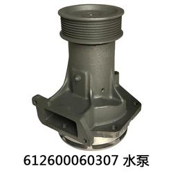 潍柴水泵612600060307-有友气泵(推荐商家)图片